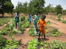 Slow Food Academy on Agroecology to be launched in East Africa